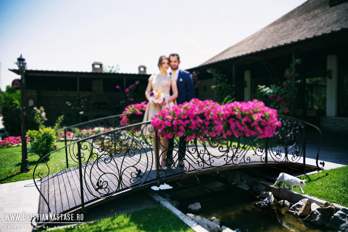Nicolae & Diana_252